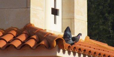 Cyprus churces and monasteries