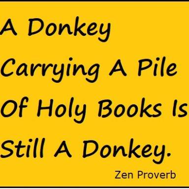 Donkey is A Donkey